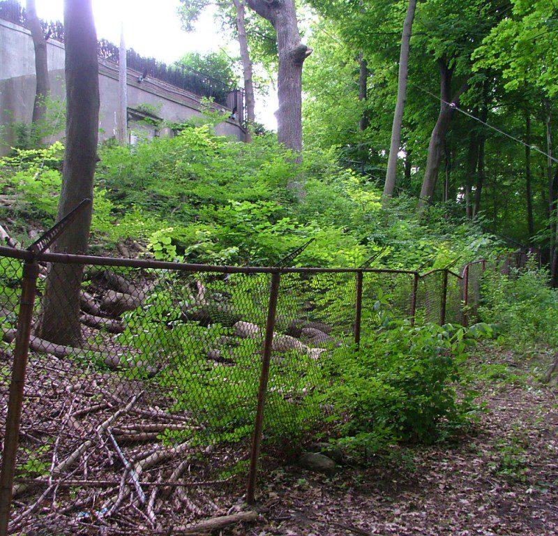 Ardwold Gate