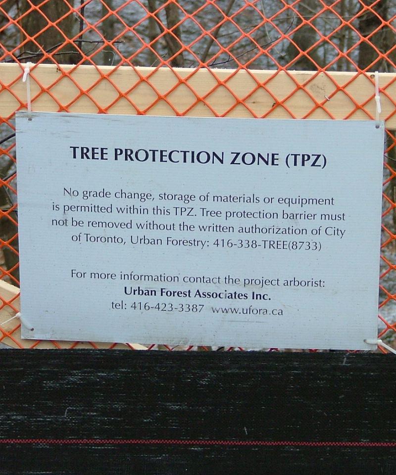 Arborist Reports