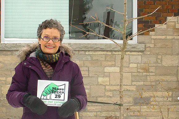 The Toronto Observer: Arborist wants citizens to improve East York tree canopy, by Patrick Rail